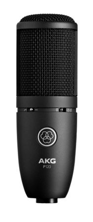 Picture of AKG P120