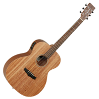 Picture of TANGLEWOOD TW2E