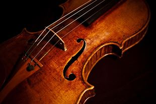 Picture for category VIOLIN & STRING INSTRUMENTS