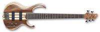 Picture of ibanez btb745