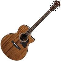 Picture of Ibanez AE245-NT