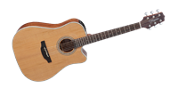 Picture of Takamine GD20CE-NS