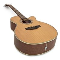 Picture of Takamine GN20CE-NS