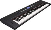 Picture of YAMAHA NP-V60