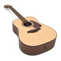 Picture of Takamine GD10-NS