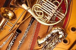 Picture for category BRASS & WIND INSTRUMENTS