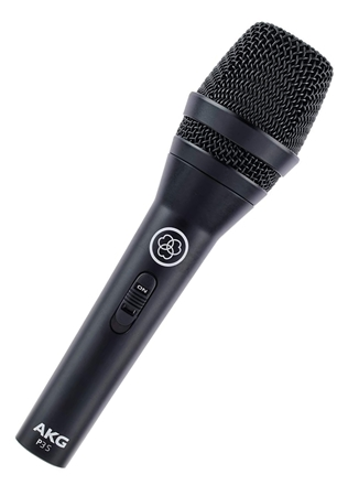 Picture of AKG P3S