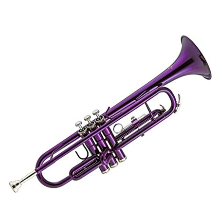 Picture of Zeff Trumpet Gloss Purple