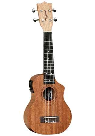 Picture of Tanglewood TWT 1 CE