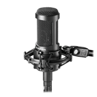Picture of Audio Technica AT2035